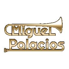 logotipo Miguel Salvador Palacios